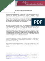 DOCTRINA DEL 02-01-2013 (Sobre El Error de Los Apellidos de VAC)