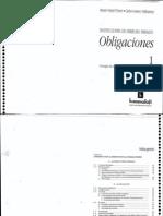 Pizarro Vallespinos Obligaciones Tomo Primero