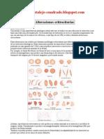 alteraciones eritrocitarias