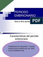 4-periodo-embrionario