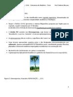 Aula 1 - Estruturas de Madeira - Introducao a Madeira Rubens 2013 - Para Mesclagem (1)