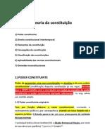 Teoria da constituição (reta final)