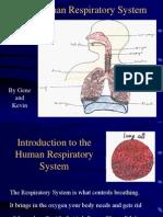 Respiratory 2