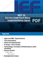 Overview of MEF 30 FINAL