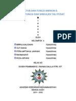 Struktur Dan Fungsi Amnion & Struktur, Fungsi Dan Sirkulasi Tali Pusat