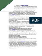 Fonduri Europene in Romania.doc