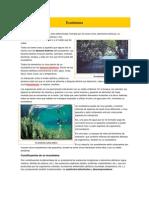 quimica ecosistemas