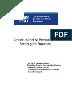 Oportunitati Si Perspective Strategice Bancare