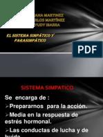 Presentación1 sistema simpatico y para simpatico.pptx