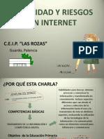 Seguridad y Riesgos en Internet
