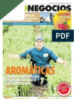 AgroNegocios 55