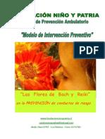 flores y reiki - niños.pdf