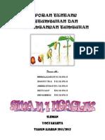 Laporan Tentang Pertumbuhan Dan Perkembangan Tumbuhan2gfhfgh