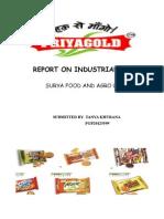 Industrial Visit Report- Surya Foods