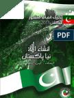 PTI Manifesto 2013 (Urdu)