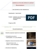 Bioremédiation.pdf