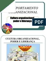 CO Cultura Organizacional