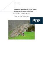 Camera-Traps and Bobcats - J.M. Collins