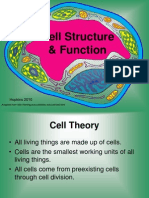 cellstructurefunction1-101211104112-phpapp01