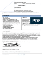 Practica 1 conservación en formol