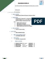 Informe de Practicas Nivel II de Trabajo Social de La Uncp