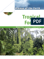 Biomes of the Earth, Tropical Forests