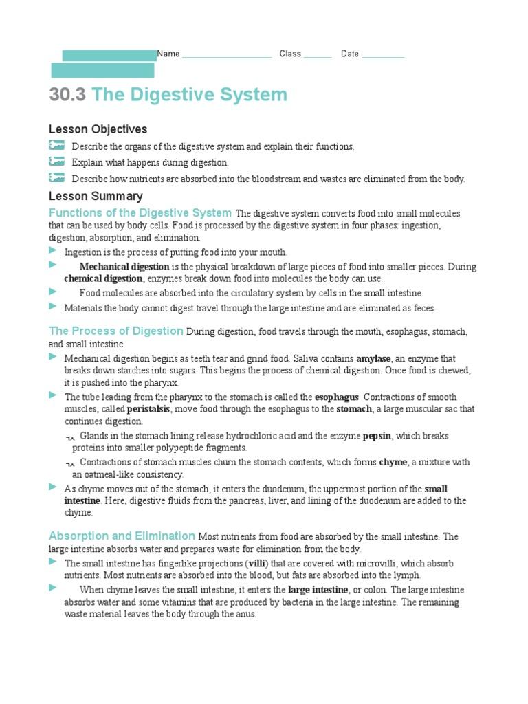 Digestive System Worksheet 1 Digestion Human Digestive