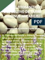 1.1Manejo fitosanitario del cultivo de tarvvi lupinus mutabilis.pptx