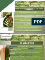 1.2. Esportacion de esparragos.pptx