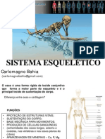 Carlo Osteologia09