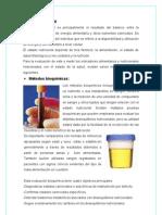 Estado nutricional.doc