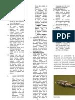 micologie taxonomie 2 2003