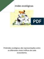 236489-Pirâmides_ecológicas