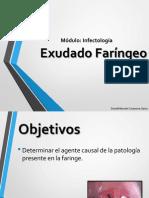 Laboratorio - Exudado Faringeo