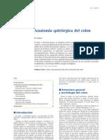 94730572-Anatomia-Quirurgica-Del-Colon-2.pdf
