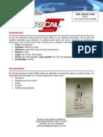 PAEPEL VINILO.pdf