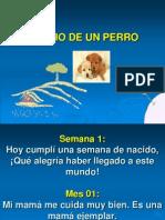 Diario Deun Perro