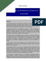 Direitos e Deveres Fundamentais Propr. (01)