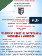 8.2. CULTIVO DE YACON  SU IMPORTANCIA ECONOMICA Y MEDICINAL.pptx