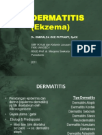 Dermatitis (Ekzema)