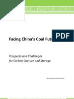Chinas Coal Future