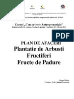 Constanta Bangal Iulian Plantatie de Arbusti Fructiferi