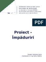 Proiect Impaduriri Final