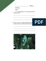 metacognition copy