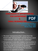 Challenges & Opportunities for Entrepreneurs