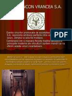 Prezentare Stategii Management - SC Vincon Vrancea SA