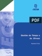 Gestao Do Tempo e Do Stress