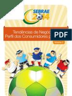 Guia Tendencia Negocios e Perfil Cons Para 2014 Vol2