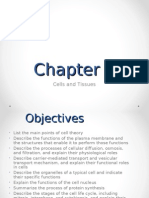 Chapter 3 Lecture