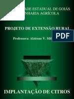 Slide Seminário Projeto Citros